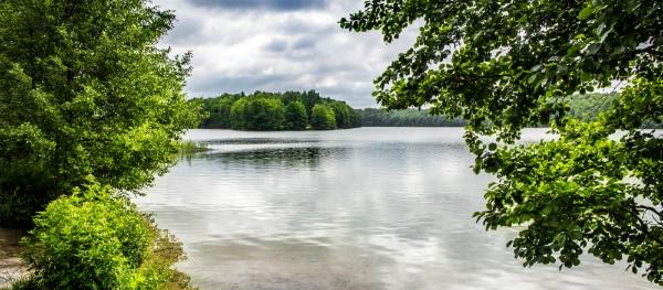 The green Liepnitzsee