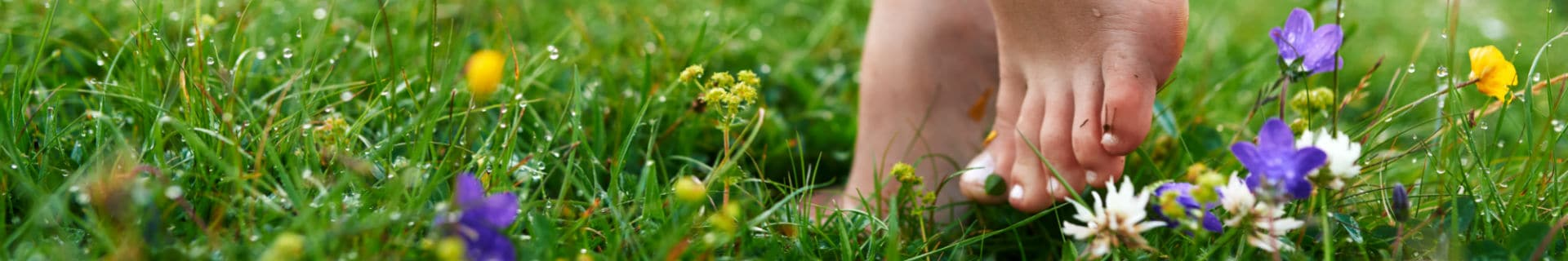 The 5 best barefoot paths in the Netherlands