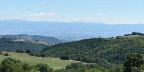 Greetings from Esther: 'Valence is like a second home'