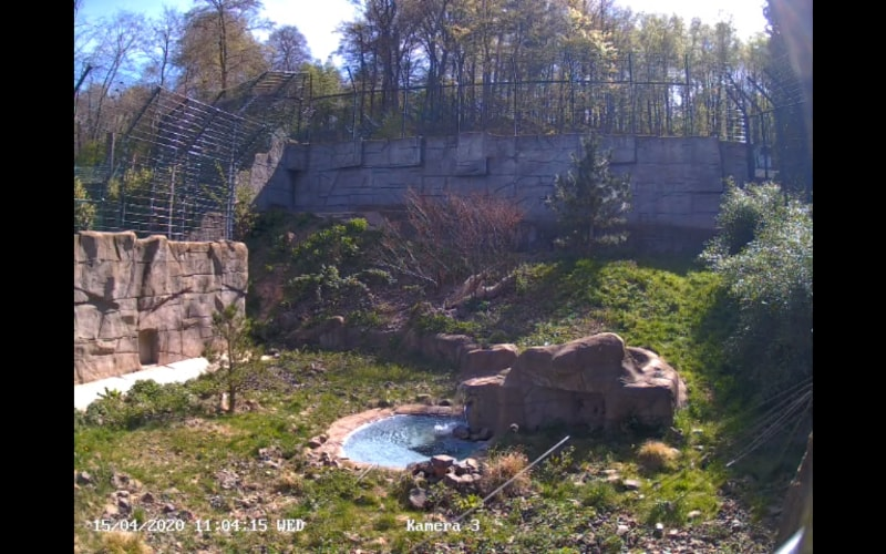 The residence of the snow leopards of the Neunkirch Zoo.