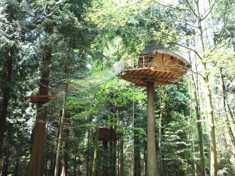 Treehouse Campsite Les Ormes